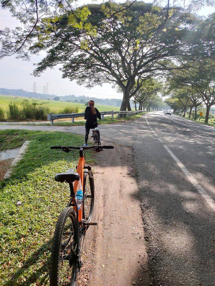 5 minutes ride to reach paddy fields