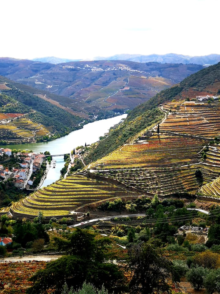 See with me the best landscapes in Douro