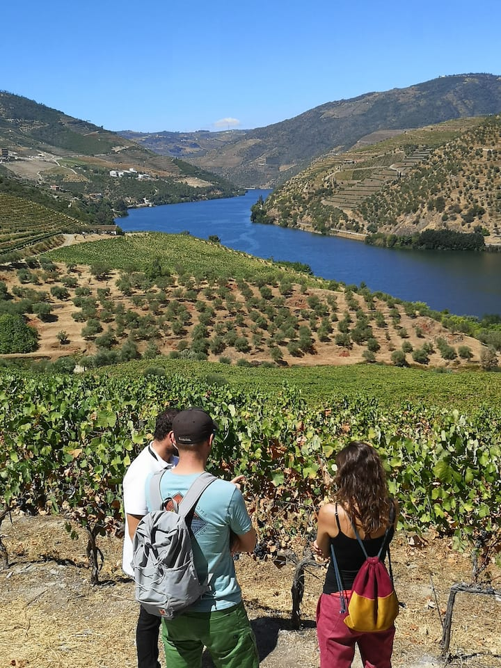 The best views  in Douro Valley.