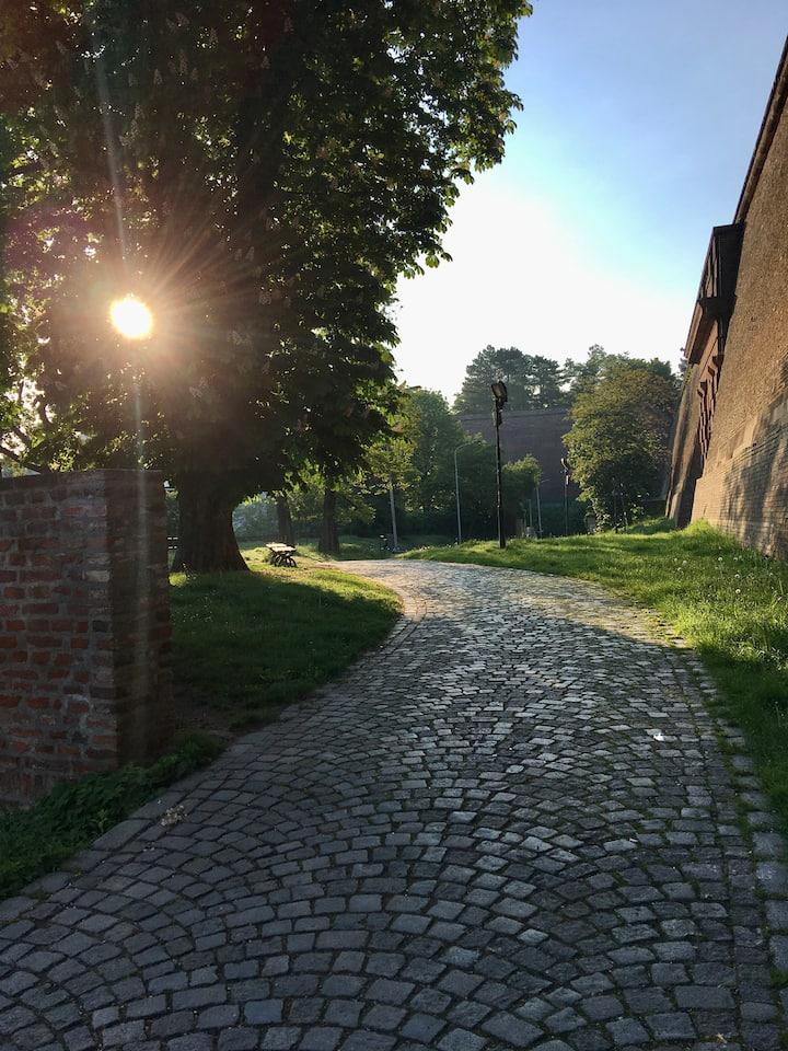 nice morning run