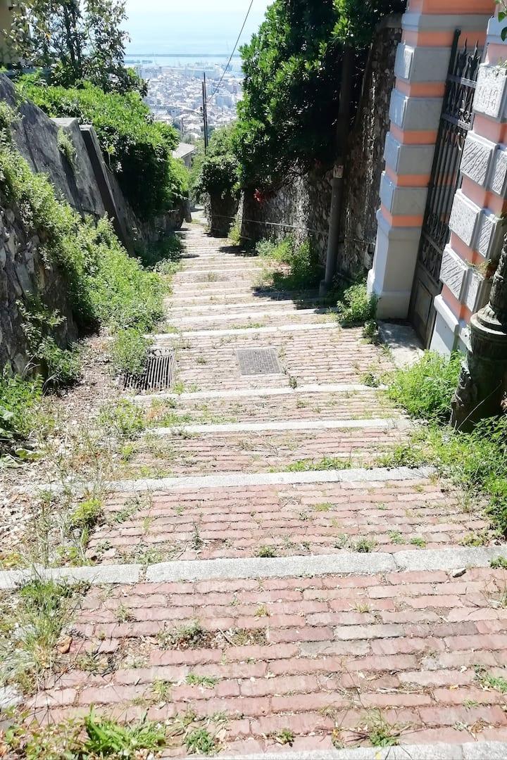 tipica creuza // tipical narrow street