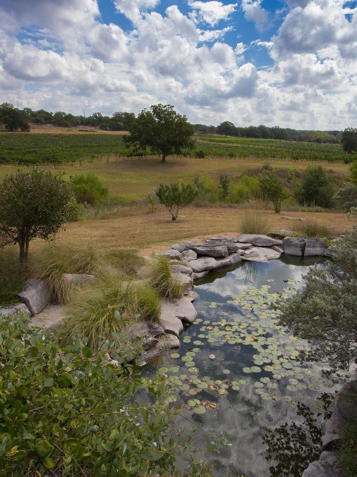 Pond & Vineyard