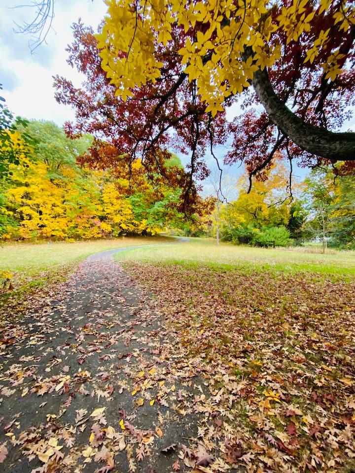 Autumn in Hudson Valley