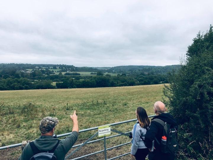 Watching a kestrel hunt local fields