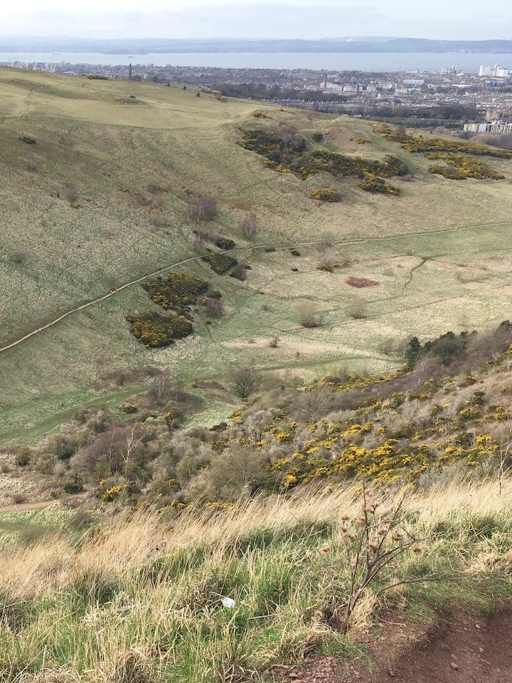view to volunteer's walk