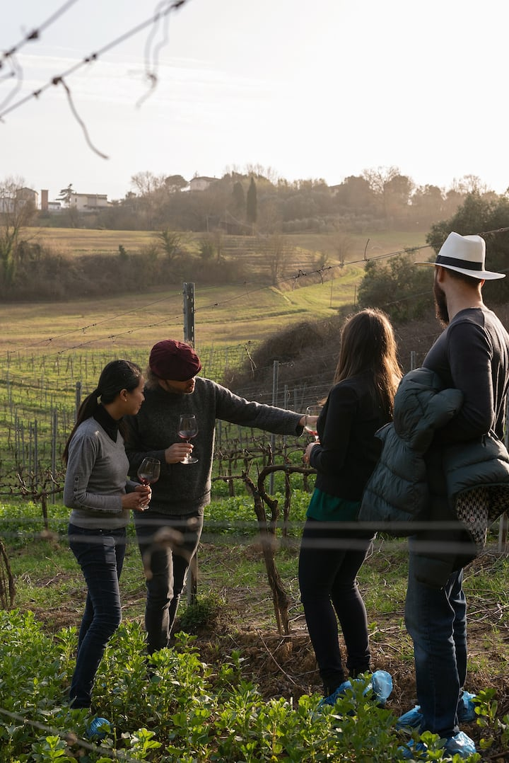talking about vineyards and grape variet