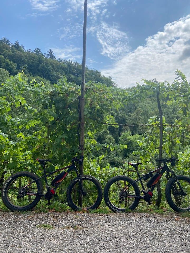 Fat elettric bike help us in our climb