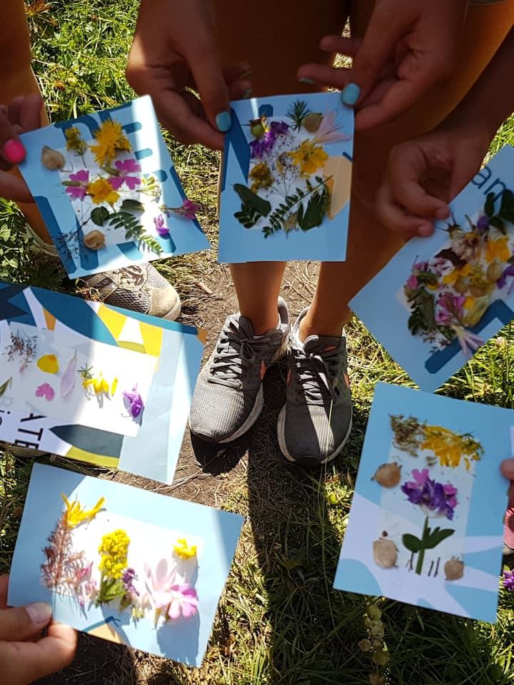 Cartes postales végétales