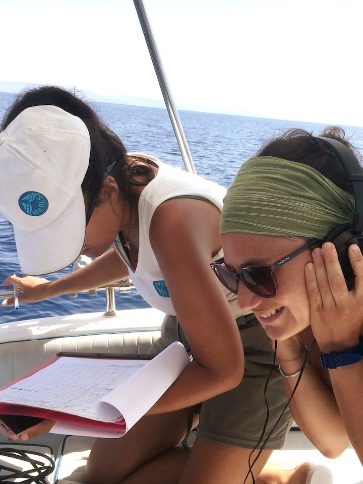 Ascoltare i suoni prodotti dai delfini