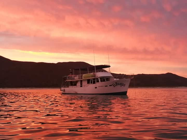 Comfortable cruiser to enjoy sunset
