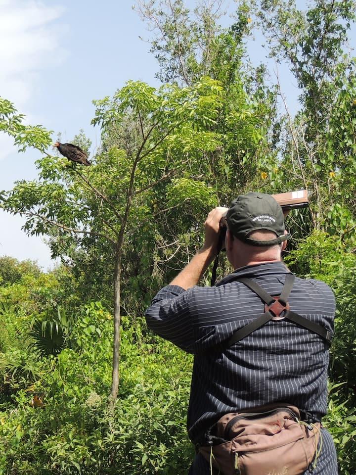 Great Mayan Birding