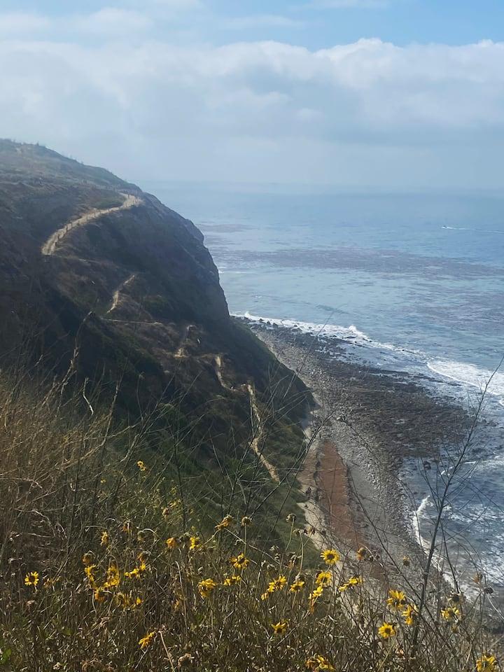 The actual coastline & trail #Views