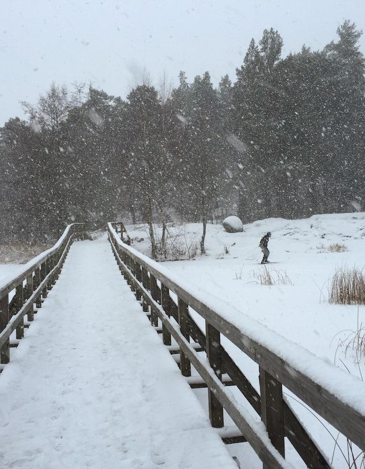 Snow on bridge