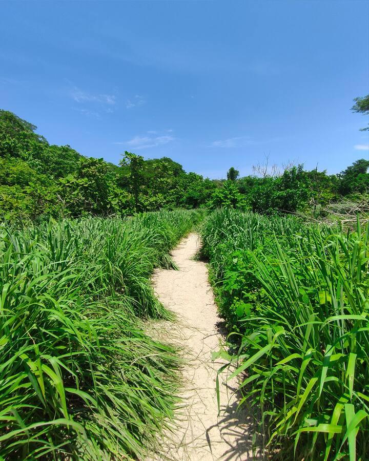 Hike through paradise.
