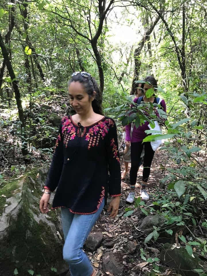 Aire puro, bosque y actividad física