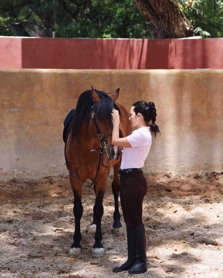 I will show you how to saddle your horse