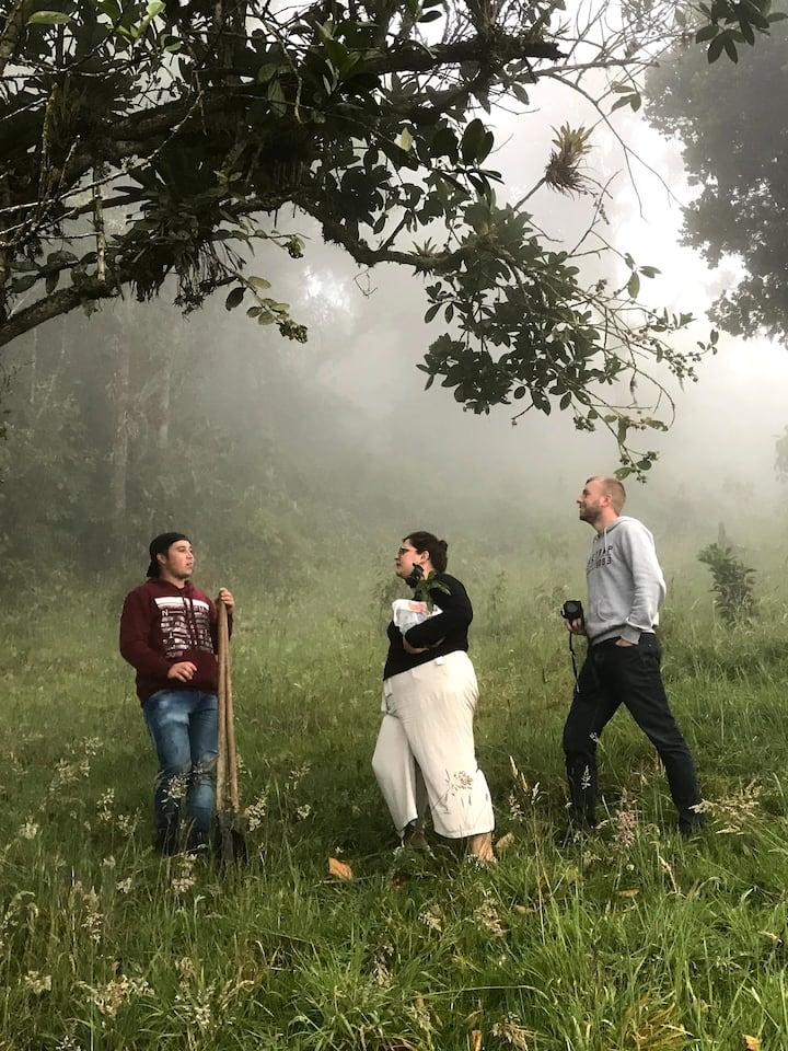 Charla sobre la flora del bosque