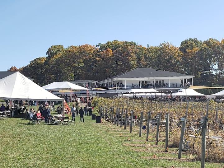 Guests enjoying the Blue Ridge Vineyard