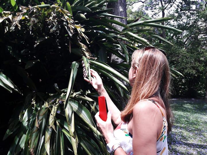 Descubriendo el Jardín Botánico