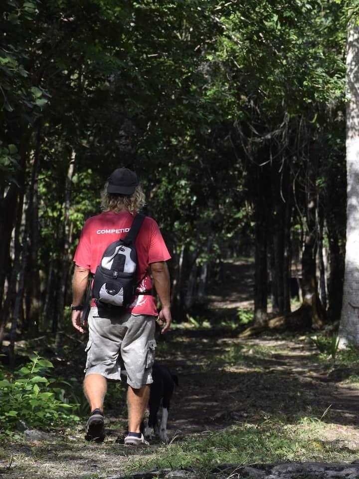 Walk of wonder