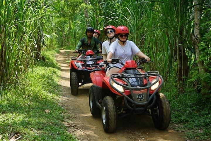ride in jungle