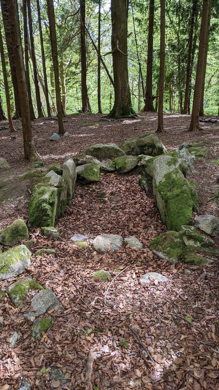 Foto 2 der Entdeckung