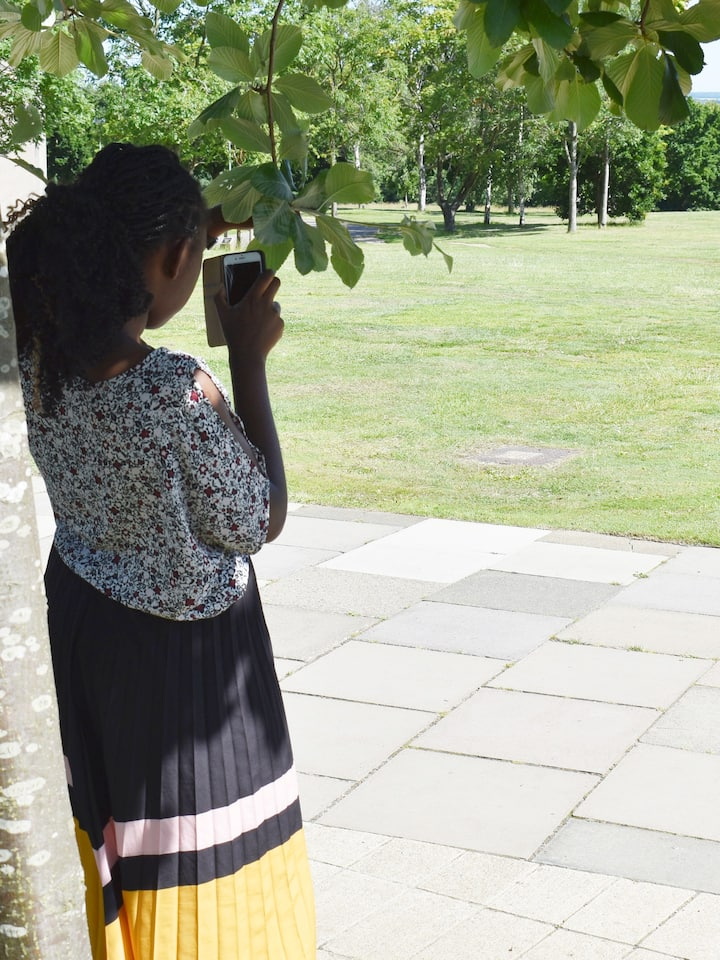 Shooting from The Cloister