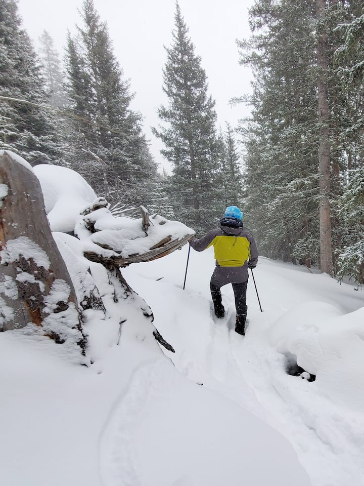 Safely led snowshoe and xc ski routes