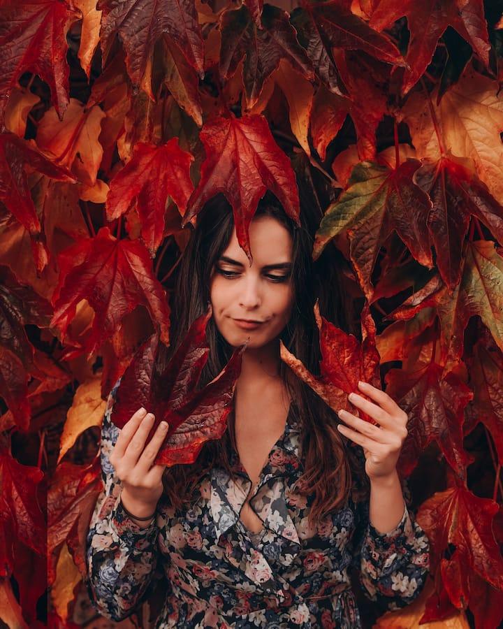 Autumnal setting