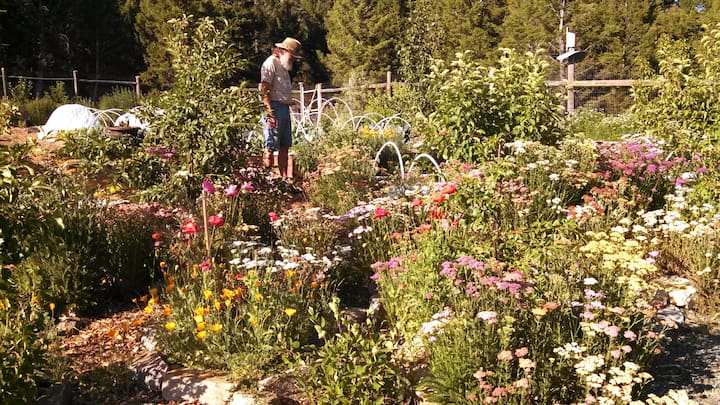 Permaculture at high elevation