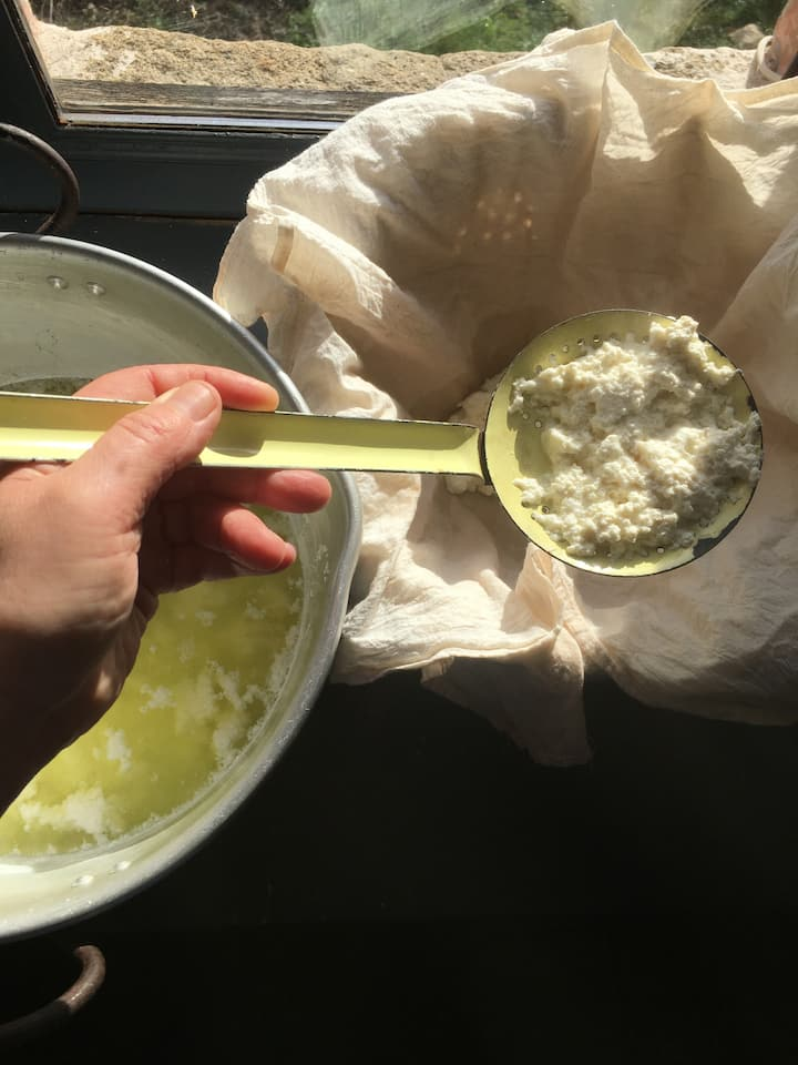Ricotta Cheese for our Ravioli lunch