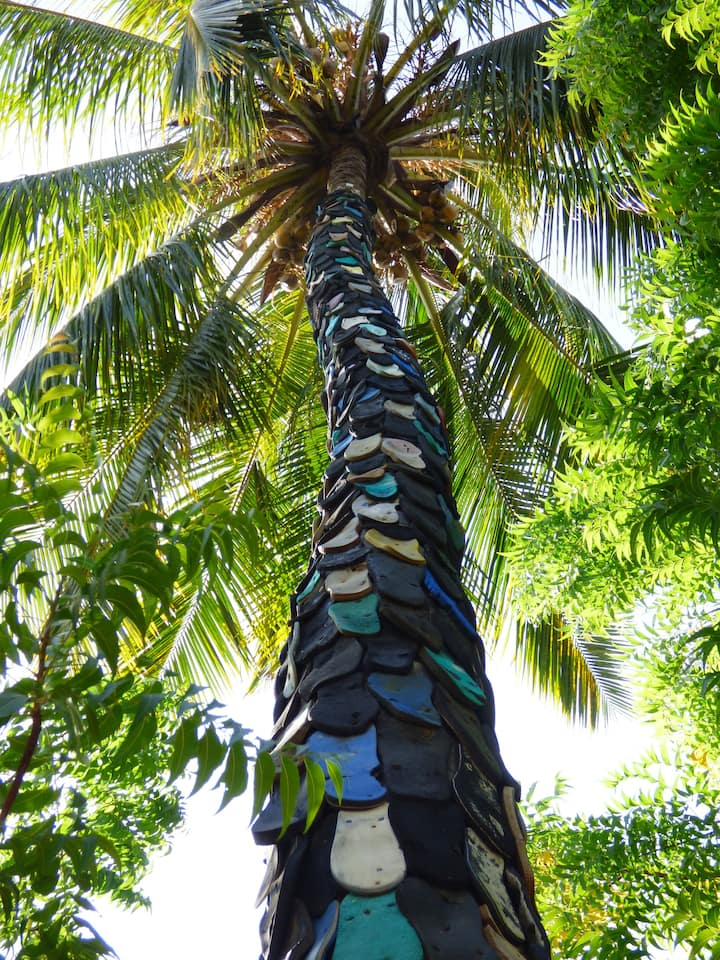 Palm tree covered in flip flop