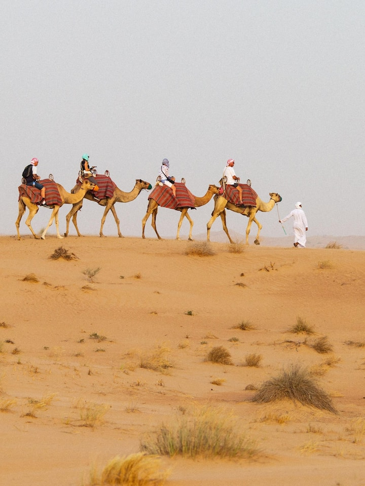 Camel Ride Amazing Experience