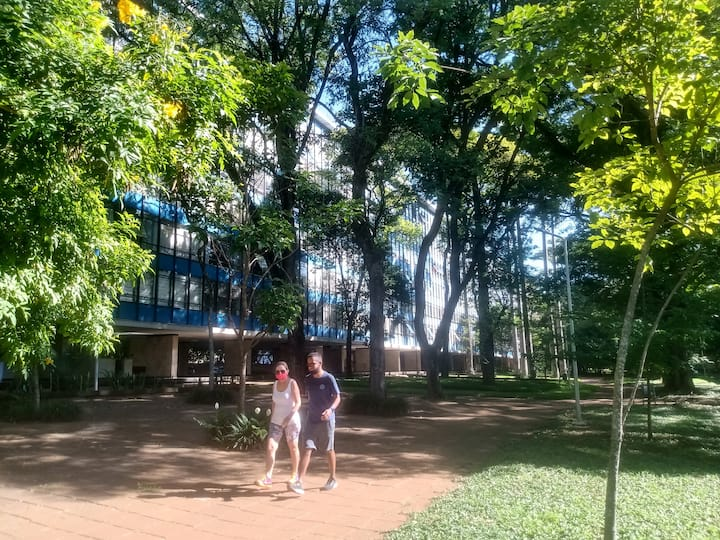 Caminhar pela cidade parque