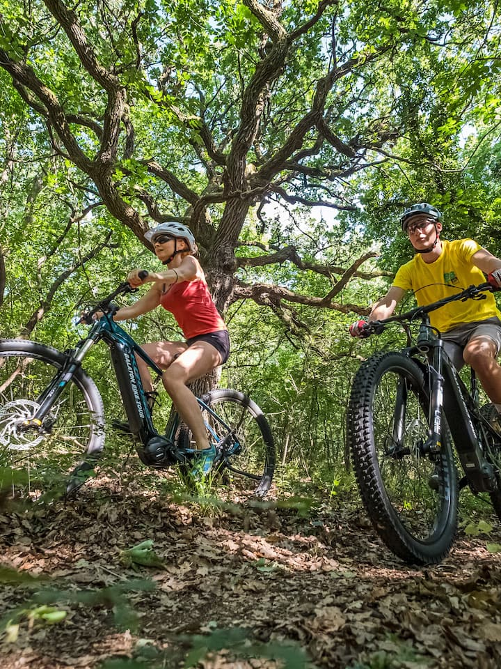 Easy to challenging ebike tour everyday