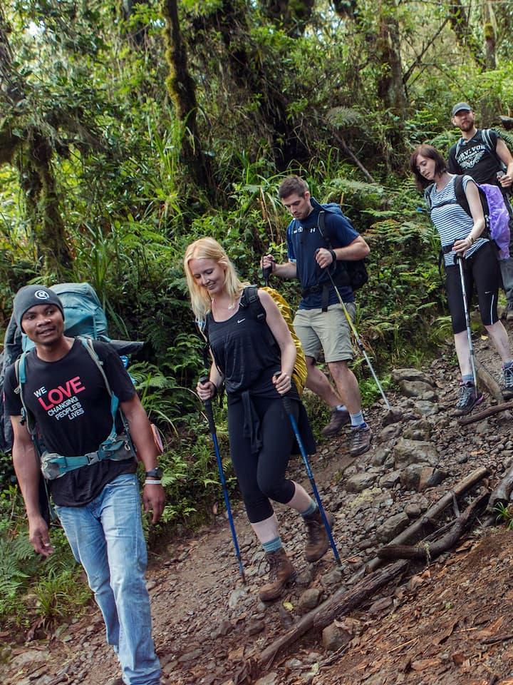 Trekking kilimanjaro to mandara hut
