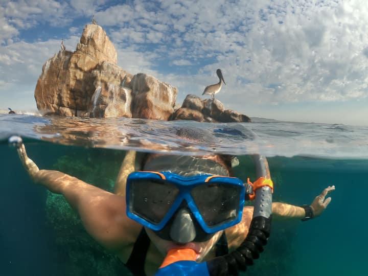 Snorkeling en Piedra Pelícano
