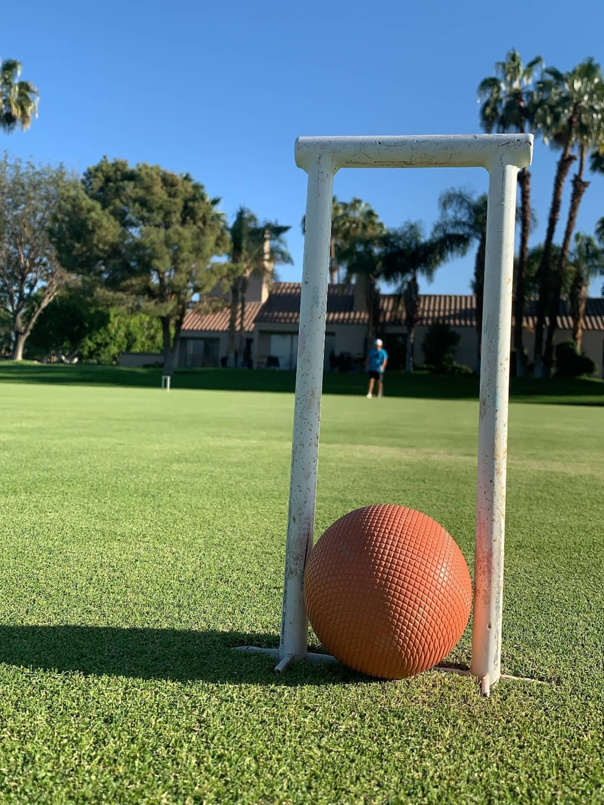 Croquet lawn and ball