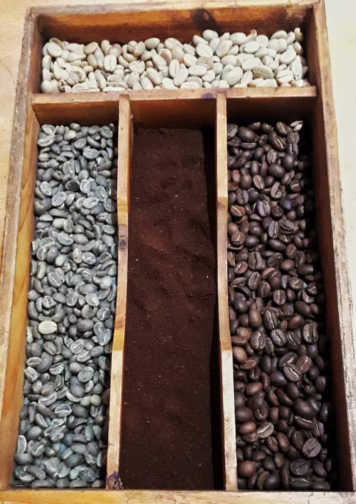 Procesos del Café y Cacao