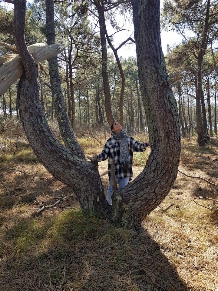 Un bel arbre pour se ressourcer