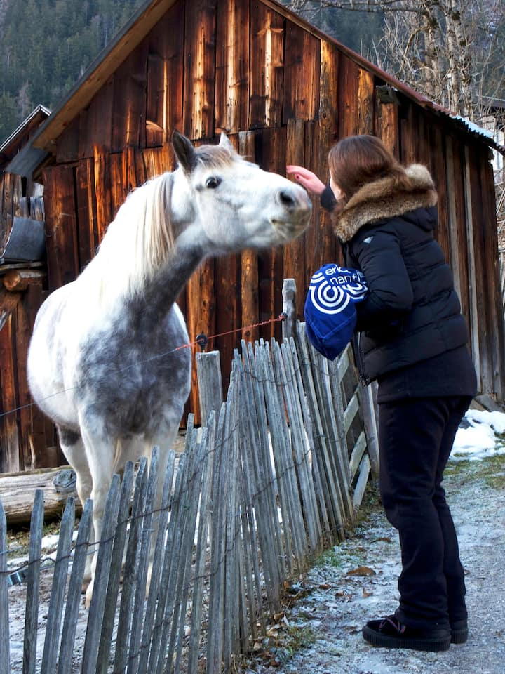 An unexpected encounter in Chamonix