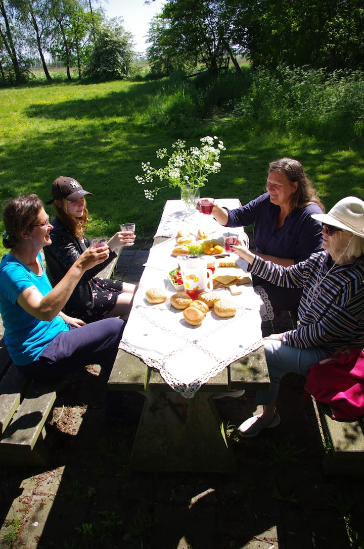 Enjoy a picnic in the field