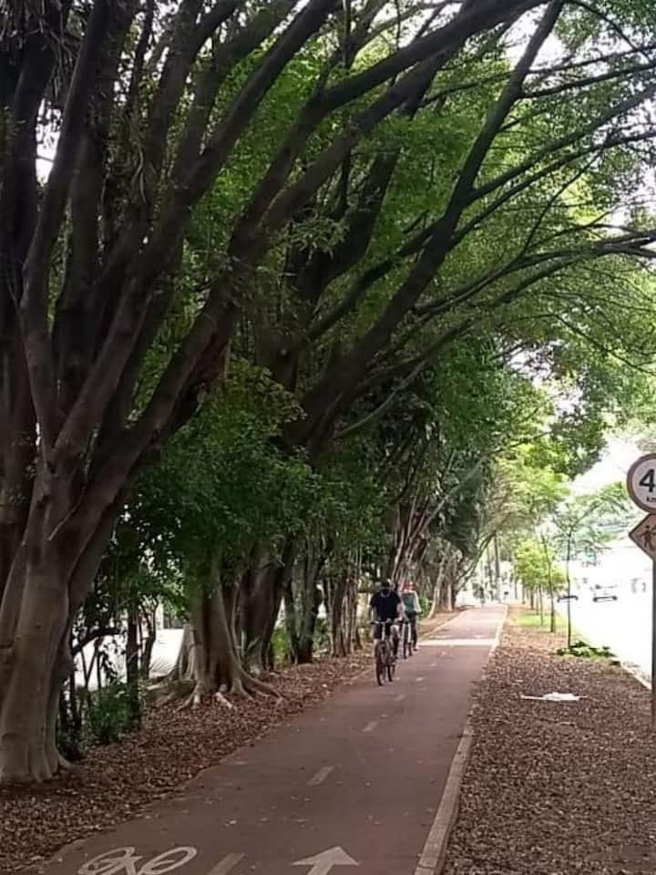 Ciclovia Arborizada