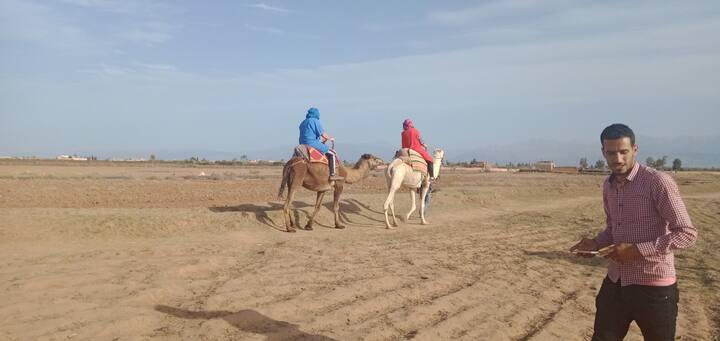 Camel riding.bouchwaw