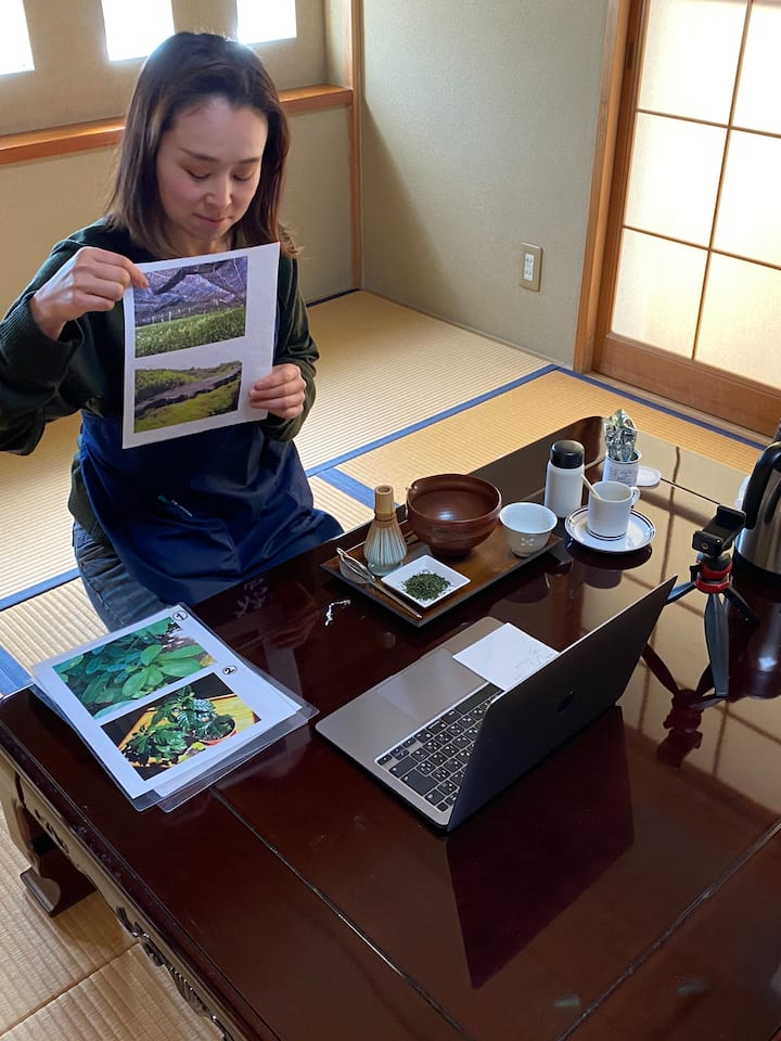 Do you know the story of Japanese Matcha