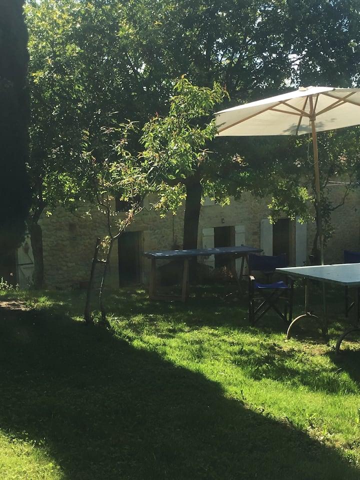 The studio: Summer