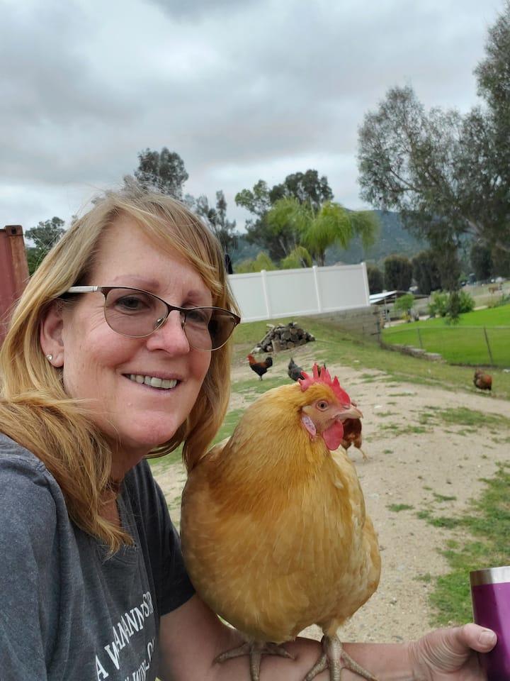 My first Chicken, Lucy