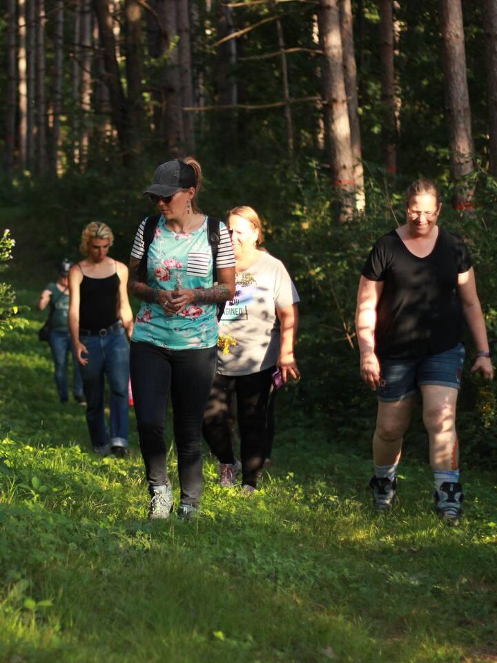 Verdant trails at LSF