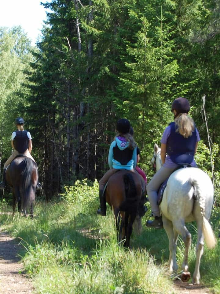 Turstier vi kan utforkse med hesten.