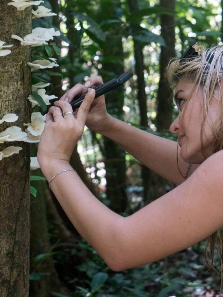 E a importância de proteger as florestas